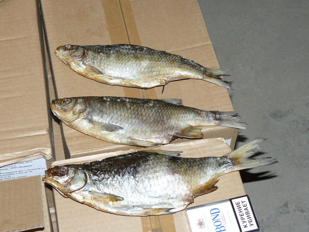 Фото речной рыбы с горбинкой